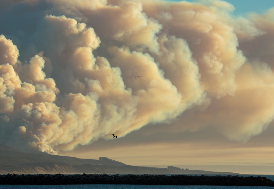 Uncontrolled Beauty - Burn at Morro Bay